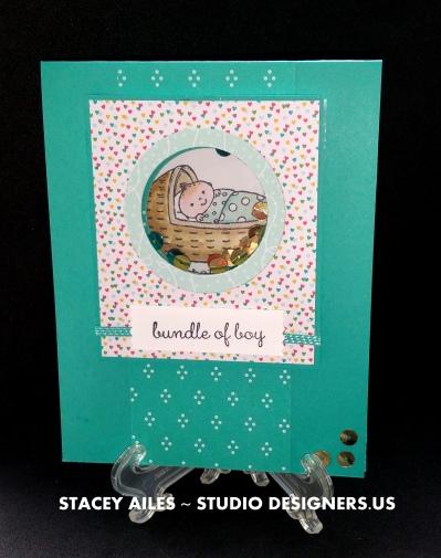 shaker card - Smith Baby 5.16.16